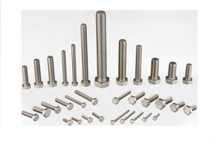 All Kinds of Stainless Steel Hardware pictures & photos