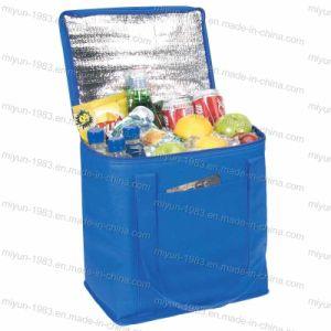 Cooler Bag, Insulated Cooler Bag, Lunch Cooler Bag, Wine Cooler Bag (M. Y. C. -014)