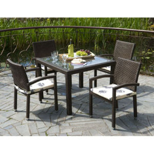 Modern Wicker Dining Set (DS-06043) pictures & photos