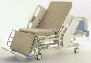 Multi-Function Electric Hospital Bed Da-10-1 (ECOM16) pictures & photos