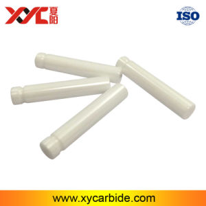 Good Surface Smoothness White Zirconia Medical Ceramic Plunger pictures & photos