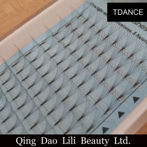 Lilibeauty Knot Free Cluster Lashes with 0.05mm 0.20mm Dcurl for Pre Made 10d Volume Eyelash Extension pictures & photos