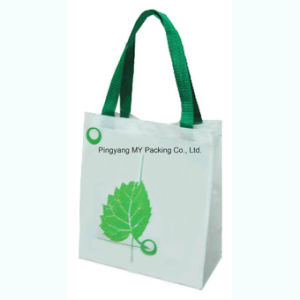 Custom Logo Eco Friendly PP Non Woven Shopping Bag pictures & photos