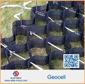 Grass Seed Mats 50mm--200mm Cell Depth HDPE Smooth Plastic Geocell pictures & photos