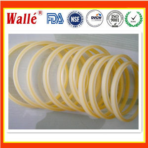 China Manufacture Nok Dsi Dust Seals pictures & photos