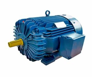 Premium Efficiency Three-Phase Induction Motor 1-250HP pictures & photos