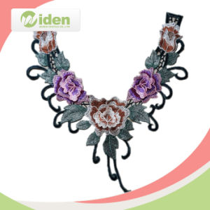 Neck Lace Design Net Embroidered 3D Colar Lace pictures & photos