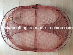 Semi-Circle Crab Trap or Fish Trap pictures & photos