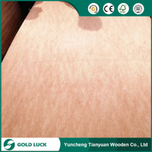 Poplar Core Bintangor Plywood for Furniture/Decoration pictures & photos