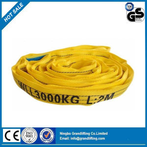 100% Polyester Lifting Strap Webbing Round Sling pictures & photos