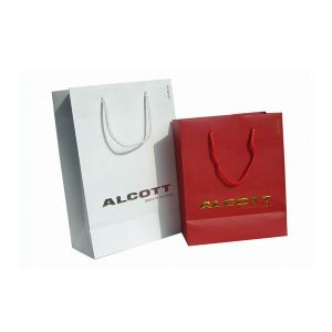 Luxury Custom Shopping Paper Bag pictures & photos