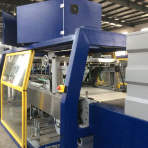Wd-450A Over Wrapping Machine for Beverage Cans (WD-450A) pictures & photos