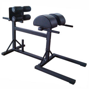 Fitness Equipment/Commercial Roma Chair/Gym Equipment Glute Ham Developer pictures & photos