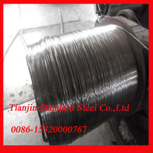 AISI 2mm 304/304L Stainless Steel Wire pictures & photos
