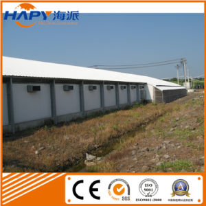 Poultry House Made by Light Steel Material pictures & photos