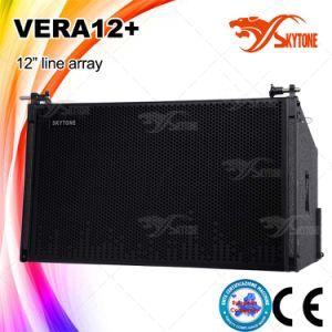 Vera12 Long Throw Line Array Horn Speaker pictures & photos