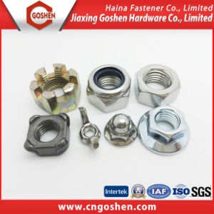 Flange Nut / Cap Nut /Nylon Nut/T Nut/Cage Nut/Wing Nut/ with High Quality pictures & photos