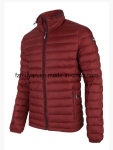 Men ′s Winter Jacket Down Jacket pictures & photos