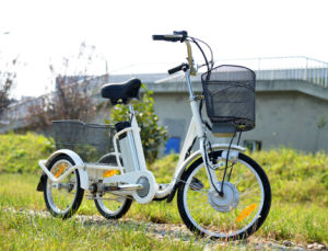 250W Mini Electric Cargo Trike for Sale with Front&Rear Basket pictures & photos
