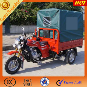 Good Motorized Motor Cargo Tricycle for Adults pictures & photos