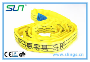 100% Polyester Lifting Sling (WSTDA 8400LBS) pictures & photos