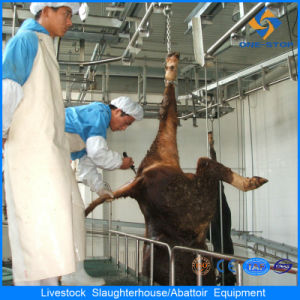 Cattle Slaughterhouse Equipment Buffalo Slaughter Houses pictures & photos