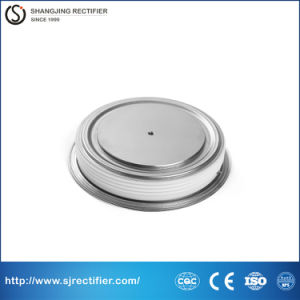 CE Approval Russia Type Silicon Diode pictures & photos