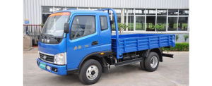 Waw Flatbed Cargo Light Truck D1-Series 4*2 pictures & photos