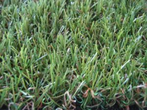 Six-Colored Yarn Soft Artificial Grass Lawn pictures & photos