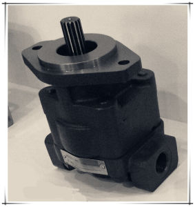 Parker/Commerical/Permco P330 Pump and Motor pictures & photos