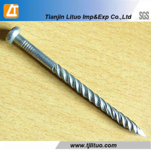 Q195 Material Electro Galvanized Twisted Shank Pallet Nails pictures & photos