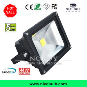 Indoor Outdoor Lighting 20W LED Flood Lamp
