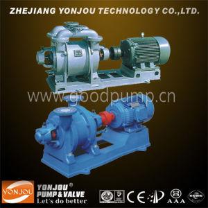 Sk Water Ring Vacuum Pump--- Liquid Ring Vacuum Pump pictures & photos