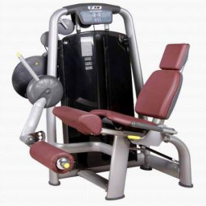 Seated Leg Extension Fitness Equipment (TZ-6002) pictures & photos