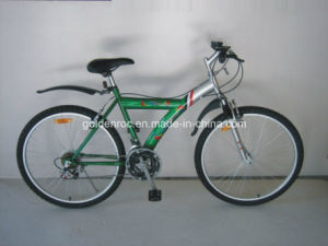 Mountain Bike / Bicycle (MS2603) pictures & photos