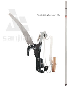 Pole Tree Saw Wood Cutting Tree Pruner Tree pictures & photos