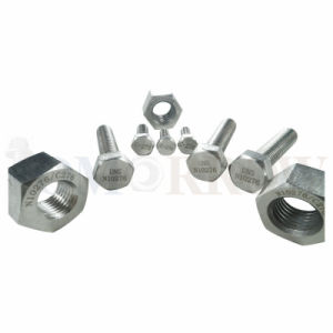 Hot Selling High Quality Exotic Alloy Hastelloy C-276 Hex Bolt/ Hex Nut/ Allen Bolt/ Stud/ Plain Washer pictures & photos