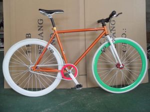 Fix Gear Bicycle Sr-MTB308 pictures & photos