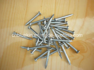 Smooth Shank Steel Nails pictures & photos