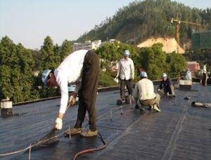 EPDM Waterproof Membrane for Roofing System pictures & photos