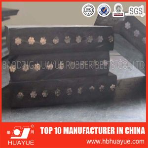 Steel Wire Rope Conveyor Belt Manufacturer pictures & photos