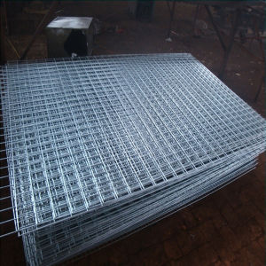 Hot Galvanized Welded Wire Mesh pictures & photos