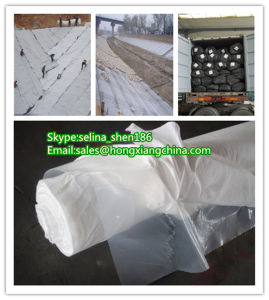 Composite Geomembrane for River, Custom-Made pictures & photos