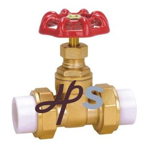 PPR Gate Valve for PPR Pipe (HG25) pictures & photos