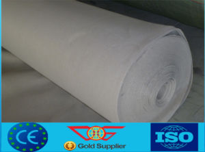 China Best Long Fiber Nonwoven Geotextile (Dageng)