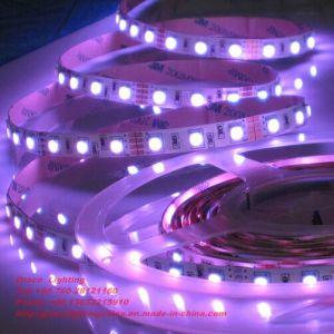 Pink LED Lights SMD5050 LED Strip (G-SMD5050-60-12V-1012) pictures & photos
