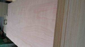 Water Proof Plywood pictures & photos