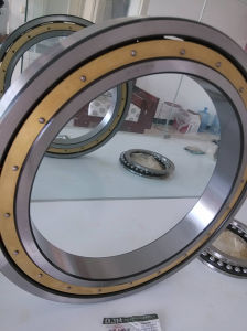 Ball Bearing for Conveyer 61972m Deep Groove Ball Bearing with Brass Cage pictures & photos