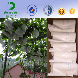 Manufacturer Durable Waterproof Grape Grape Fruit Growing Protection Paper Bags pictures & photos