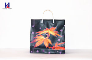 Non-Woven Promotional Bag pictures & photos